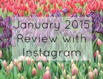 January 2015 Review with Instagram