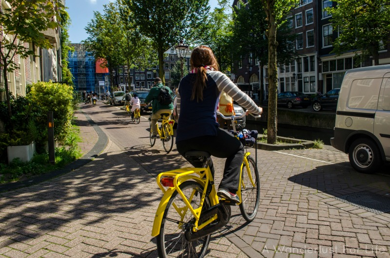 Rented bikes in Amsterdam