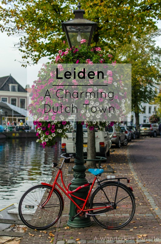 Leiden pin
