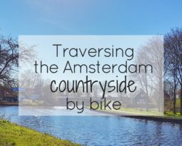 Traversing the Amsterdam countryside by bike