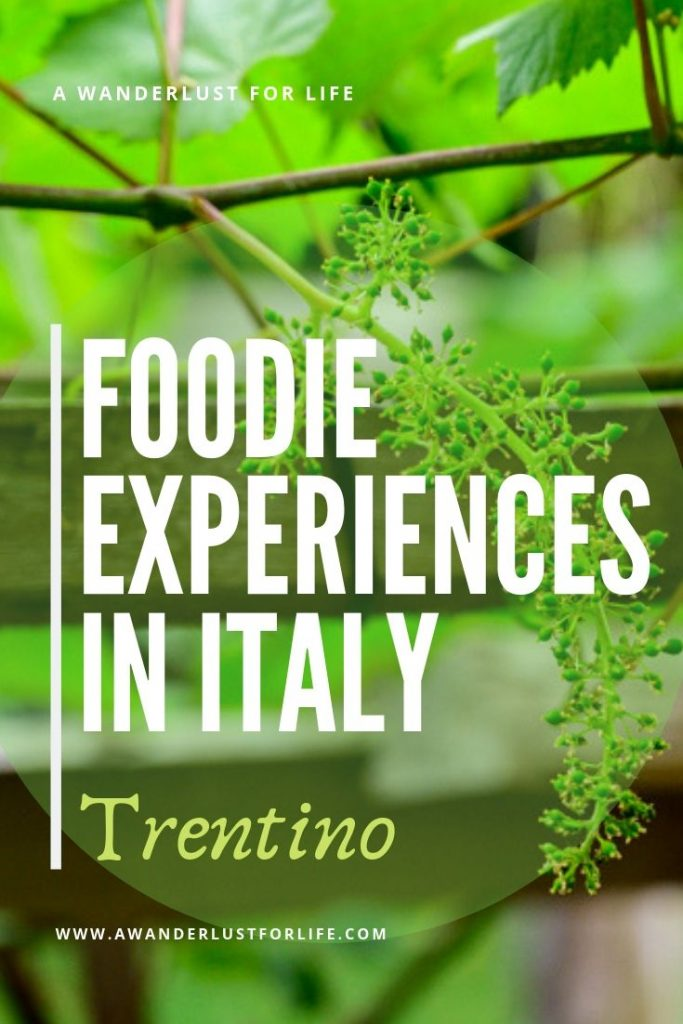 Foodie trip to Italy-Trentino pin