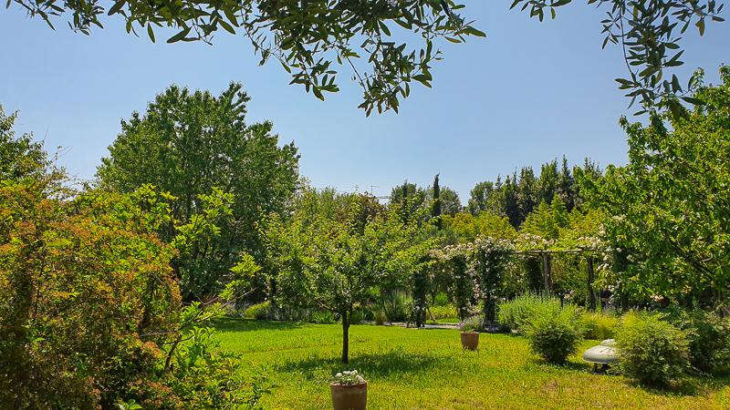 Gardens on Giudecca one of four