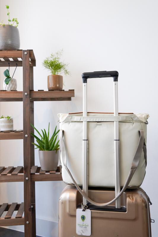 Peak Design Everyday Tote V2 luggage pass-through