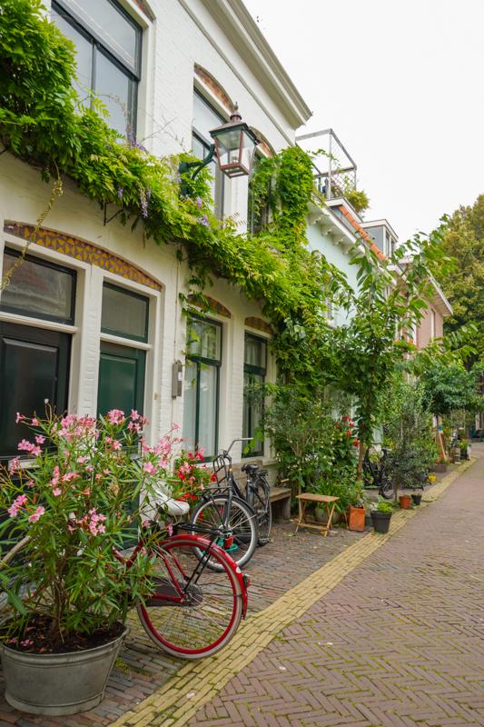 Street in Haarlemn Netherlands
