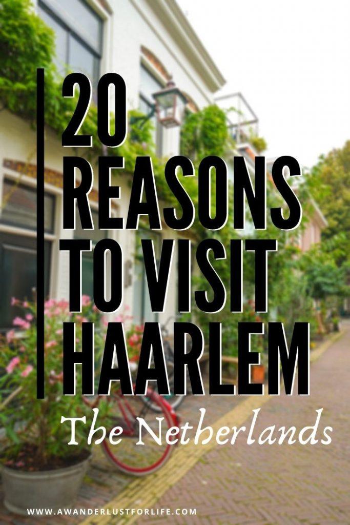 reasons to visit haarlem pin